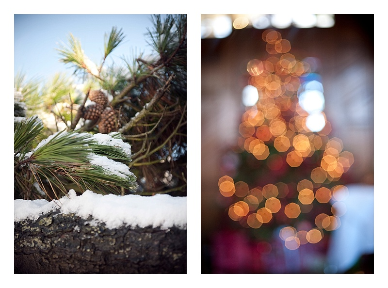 a collage of things we love about winter snow long an evergreen tree and a christmas tree with shimmering lights